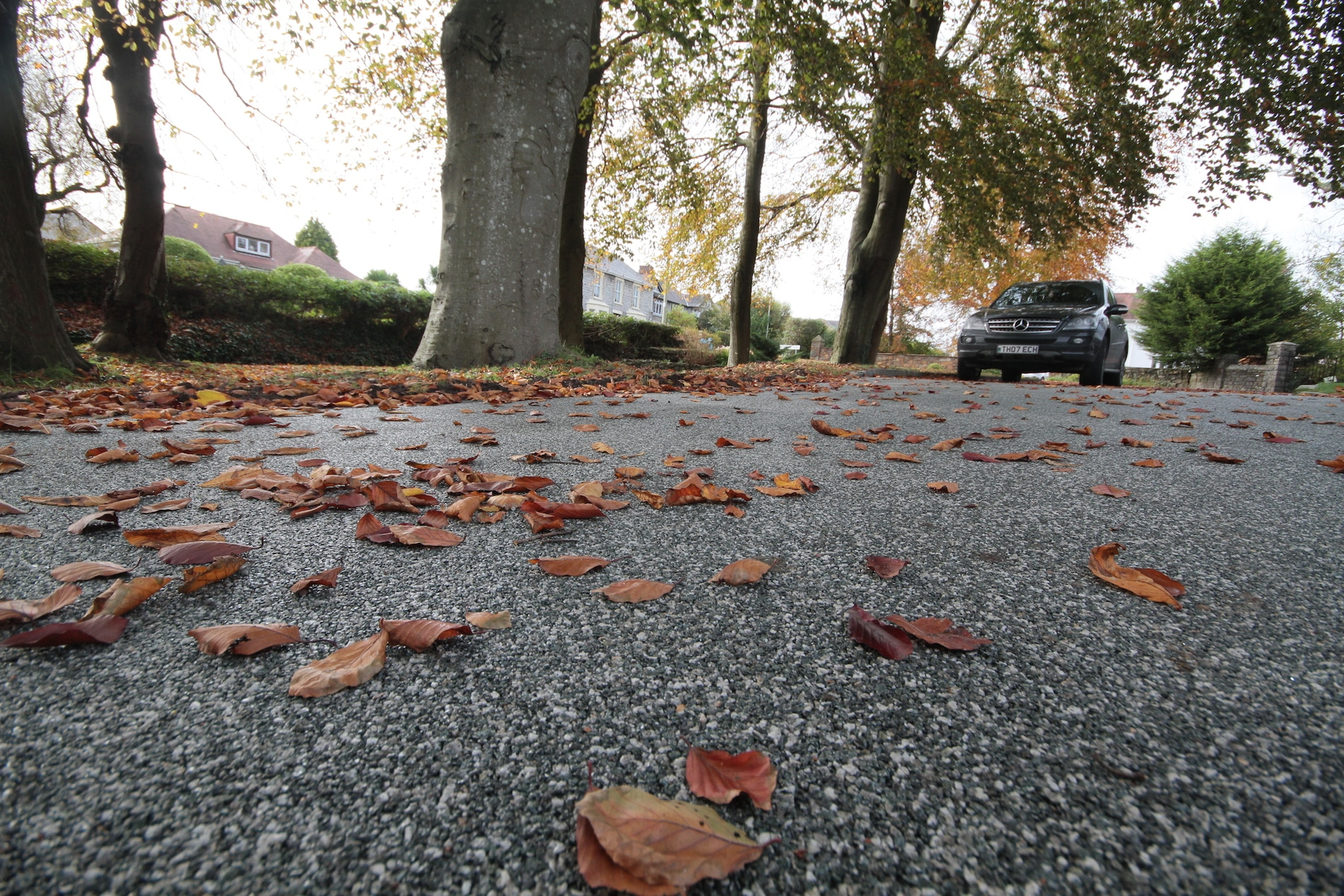 leaves on resin driveway